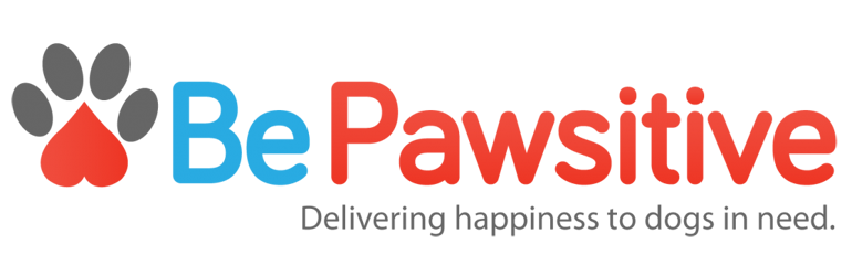 BePawsitive, Dallas startup, Texas Startup, Social Entrepreneurship, startup interview
