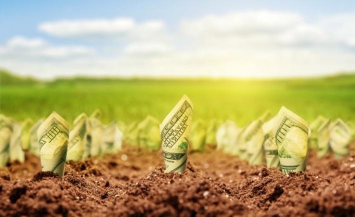 moneygrowth